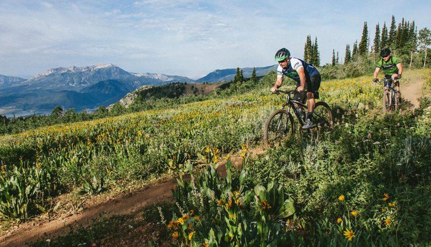 Powder Mountain Brim Trail