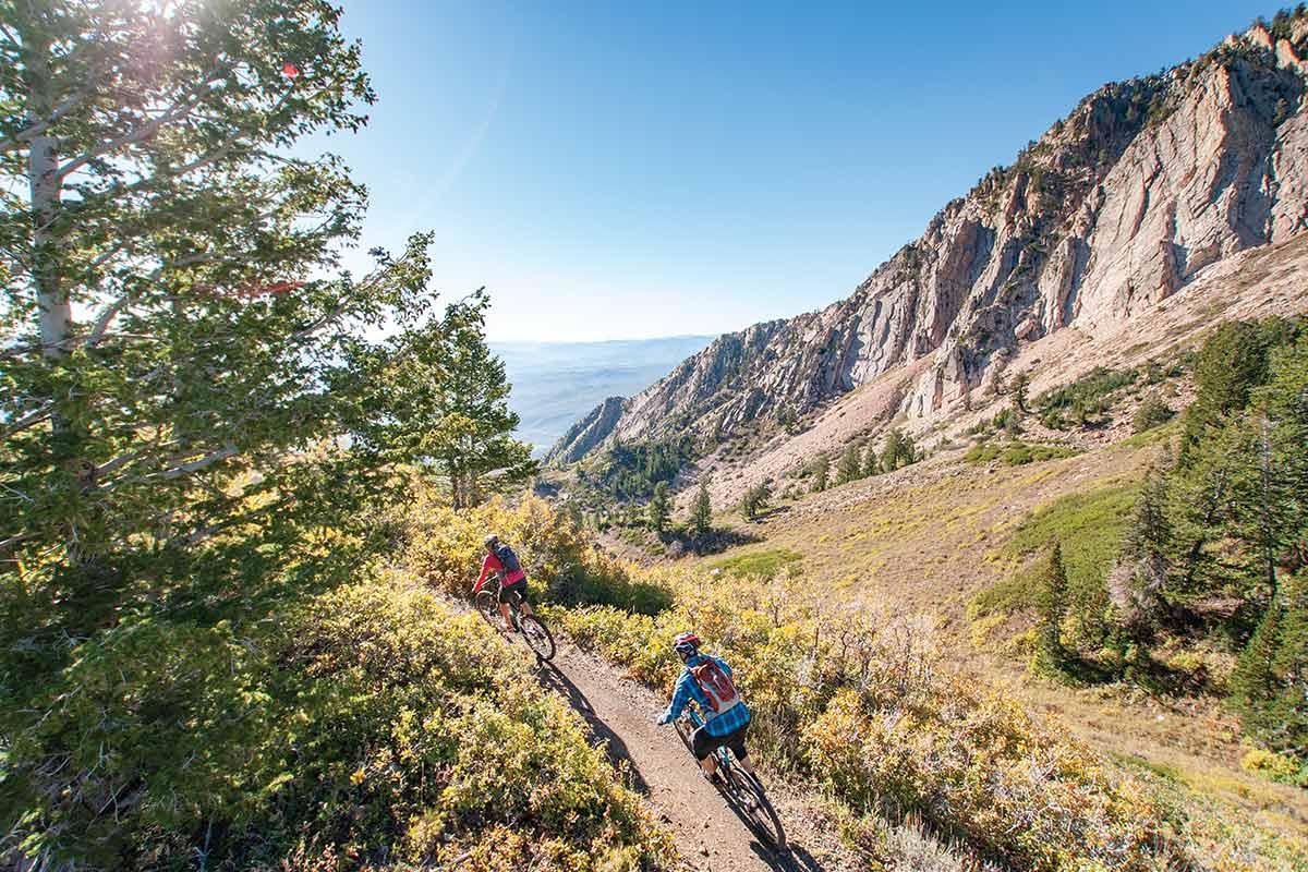 sardine trail to brim trail mountain biking