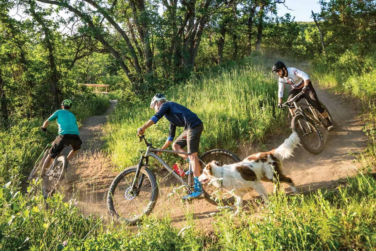 mountain biking ogden valley